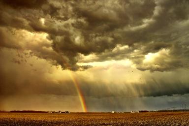Rainbow farm Jamie Vesay WM 42213 IMG_0467 - Version 3 iPhone treated copy