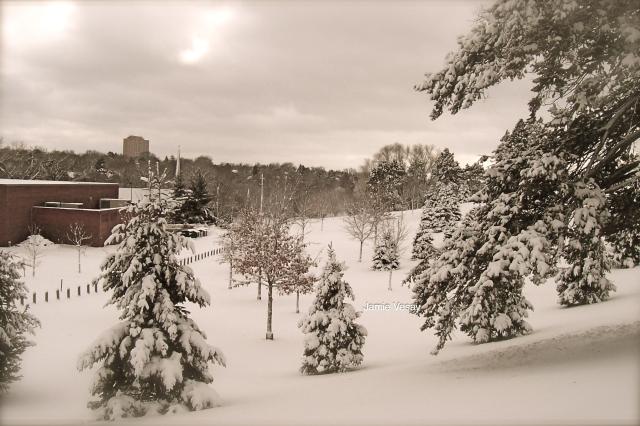 Snow in Omaha park Jamie Vesay WM 100_2648_2 copy