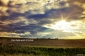 Field of glory southwestish of Norfolk