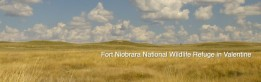 Fort Niobrara National Wildlife Refuge