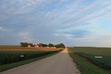 Country road with corn and beans