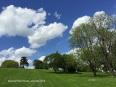 th_Memorial Park Omaha early May 2015 LBLD WM Jamie Vesay IMG_0644