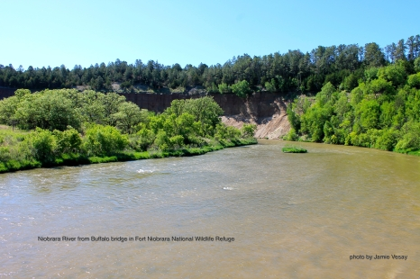 Niobrara River from Buffalo Bridge in Frt Niobrara Wildlife Refuge 514 LBLD Jamie Vesay WM TRD IMG_9731 - Version 2